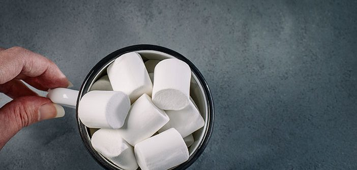 Marshmallow's and It's Relationship to Successful People